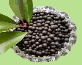 腐植酸钠(颗粒)